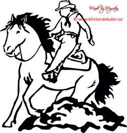 Horse Western slide