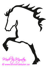 Single Icelandic horse 25