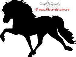 Enkel Islandshäst 32
