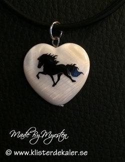 Halsband Islandshäst i tölt