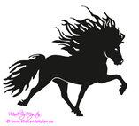 Single Icelandic horse 27