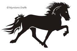 Singel Icelandic horse 2