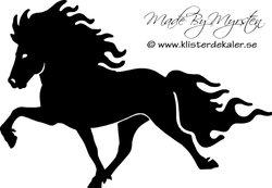 Single Icelandic horse 18
