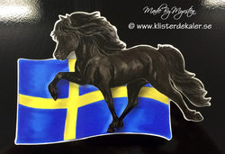 Icelandic horse Swedish flag