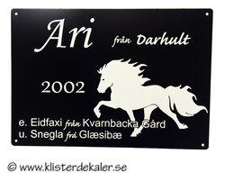 Sings 3 Icelandic Horse