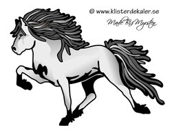 Single Icelandic horse 14 color