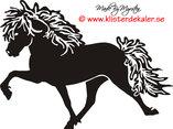 Enkel Islandshäst 8