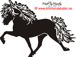 Icelandic horse 8