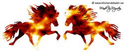 Dubbel Eld islandshästar