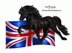Islandshäst med Engelska flaggan, bildekor