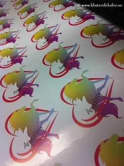 Amaizing flerfärgat klistermärke