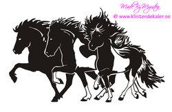 Triple Icelandic horse 1