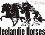 Triple Icelandic horse 2