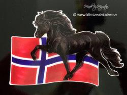 Icelandic horse Norway flag