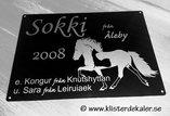 Sings 4 Icelandic Horse